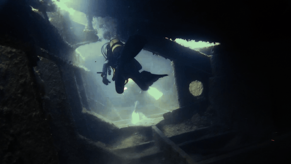 Immersione Mohawk Deer (Portofino) – 12 Luglio 2015
