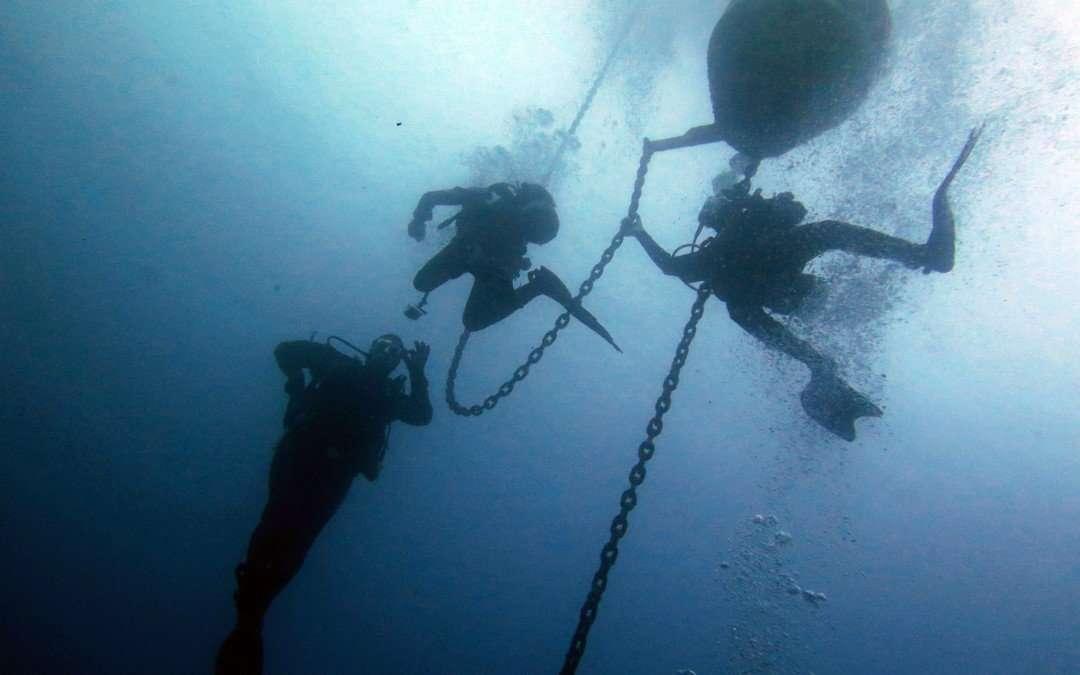 Immersione a AMP Portofino – 9 giugno 2018