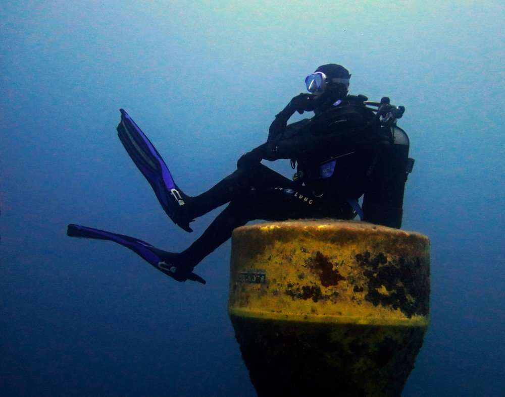 Immersione Bergeggi 8 Novembre 2015