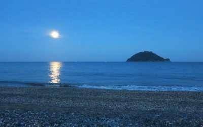 Immersione Notturna Albenga – 17 maggio 2019