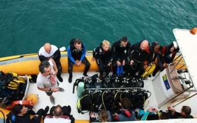 Immersione a AMP Portofino –  4 luglio 2019