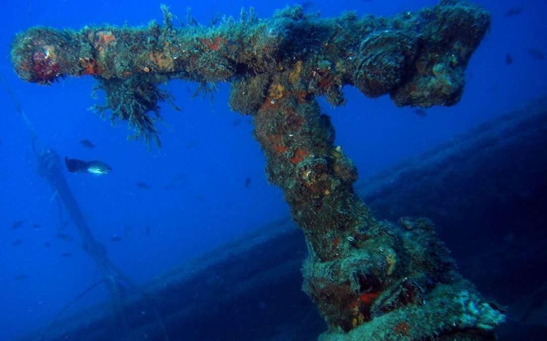 Immersione relitti: Cargo Armato e Bettolina- 23 settembre 2017