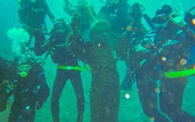 Doppia immersione sabato 9 ottobre da Vado ligure (Bergeggi)